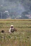 Agricoltori in Mai Chau Fotografia Stock Libera da Diritti