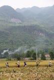 Agricoltori in Mai Chau Fotografia Stock