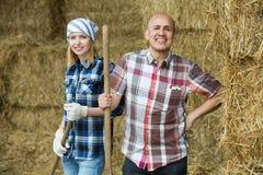 Agricoltori maturi e giovani felici in hayloft Fotografia Stock Libera da Diritti