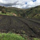 Agricoltori negli altopiani ecuadoriani Immagine Stock Libera da Diritti