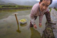Agricoltori occupati con i raccolti di piantatura in interruttore Cina Fotografia Stock