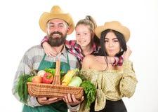Agricoltori rustici della famiglia fieri del raccolto di caduta sviluppato con amore I genitori e la figlia celebrano il festival fotografia stock