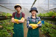 Agricoltori sicuri che posano per la fotografia Fotografia Stock Libera da Diritti