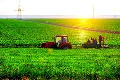 Agricoltori su un trattore Immagine Stock Libera da Diritti