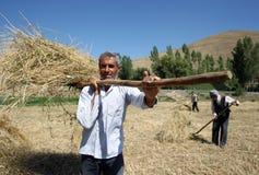 Agricoltori sul lavoro in un campo vicino a Tatvan i Turchia Fotografia Stock Libera da Diritti