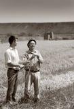Agricoltori sul raccolto Fotografia Stock Libera da Diritti