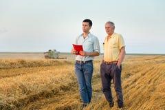 Agricoltori sul raccolto del grano Fotografia Stock Libera da Diritti