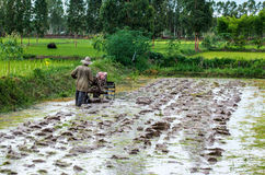 Agricoltori Tailandia fotografie stock