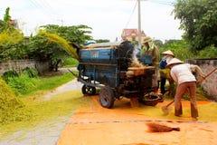 Agricoltori vietnamiti che trebbiano riso Fotografie Stock Libere da Diritti