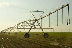 Irrigazione dell'azienda agricola Immagine Stock Libera da Diritti