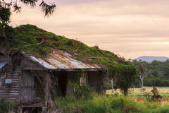 Agricoltura abbandonata sparsa nel paese Immagine Stock