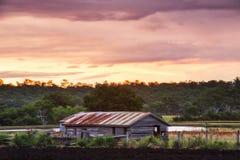 Agricoltura abbandonata sparsa nel paese Immagine Stock Libera da Diritti