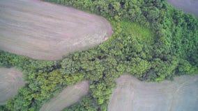 Agricoltura aerea Fotografia Stock Libera da Diritti