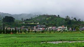 Agricoltura agricola in Java Immagini Stock Libere da Diritti