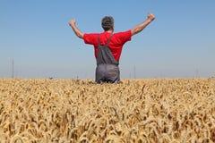 Agricoltura, agricoltore che gesturing nel giacimento di grano con i pollici su Immagini Stock Libere da Diritti