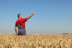 Agricoltura, agricoltore che gesturing nel giacimento di grano con il pollice su Fotografia Stock