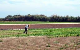 Agricoltura - agricoltore che lavora nel campo Immagini Stock