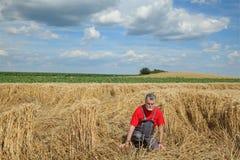 Agricoltura, agricoltore disperato nel giacimento di grano nocivo Fotografie Stock