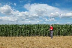 Agricoltura, agricoltore nel campo di grano Immagini Stock Libere da Diritti