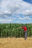 Agricoltura, agricoltore nel campo di grano Fotografia Stock Libera da Diritti