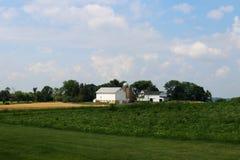 Agricoltura, agronomia e fondo di azienda agricola Fotografie Stock Libere da Diritti