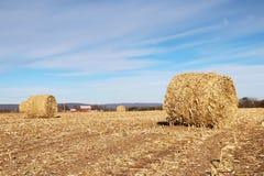 Agricoltura, agronomia e fondo di azienda agricola Concetto della raccolta Fotografia Stock Libera da Diritti