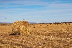 Agricoltura, agronomia e fondo di azienda agricola Concetto della raccolta Fotografie Stock