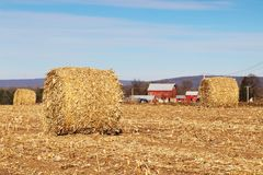 Agricoltura, agronomia e fondo di azienda agricola Concetto della raccolta Fotografie Stock Libere da Diritti