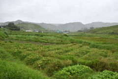 Agricoltura al Meghalaya Fotografia Stock Libera da Diritti