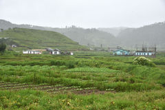 Agricoltura al Meghalaya Fotografia Stock