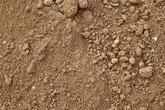 Agricoltura al suolo organica Immagini Stock Libere da Diritti