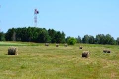Agricoltura Altaya Fotografia Stock