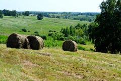 Agricoltura Altaya Immagini Stock