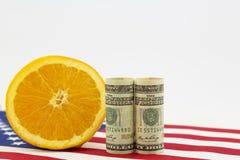 Agricoltura americana in soldi, in bandiera e nei simboli della frutta Fotografie Stock Libere da Diritti