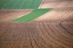 Agricoltura arata del campo Immagine Stock Libera da Diritti