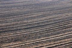 Agricoltura arata del fondo del campo Fotografia Stock