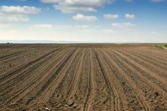 Agricoltura arata del paesaggio del campo Fotografia Stock Libera da Diritti
