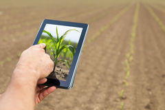Agricoltura astuta Agricoltore che usando piantatura del cereale della compressa Agr moderno Fotografia Stock Libera da Diritti