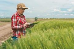 Agricoltura astuta responsabile, facendo uso della tecnologia moderna nel agricultur Fotografia Stock Libera da Diritti