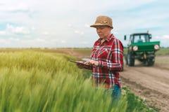 Agricoltura astuta responsabile, facendo uso della tecnologia moderna nel agricultur Fotografia Stock