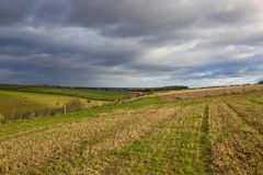 Agricoltura in autunno Fotografia Stock