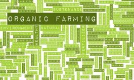 Agricoltura biologica royalty illustrazione gratis