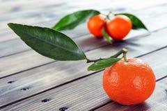Agricoltura biologica delle clementine fresche, sulla base di legno Fotografia Stock Libera da Diritti