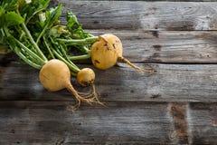 Agricoltura biologica naturale ed alimento vegetariano con le verdure sostenibili Immagini Stock