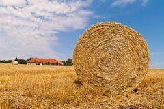 Agricoltura. campo con le balle della paglia Fotografia Stock