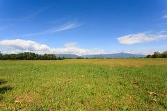 Agricoltura, campo incolto Fotografie Stock Libere da Diritti