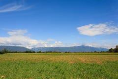 Agricoltura, campo incolto Immagine Stock Libera da Diritti