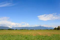 Agricoltura, campo incolto Fotografia Stock