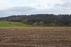 Agricoltura - campo raccolto in un paesaggio Immagini Stock Libere da Diritti