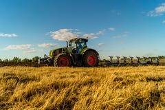 Agricoltura che ara trattore sui giacimenti del cereale del frumento Fotografia Stock